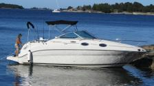 Sea Ray 240 Sundancer -2004